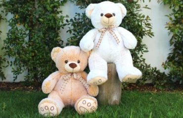 Urso Peluche